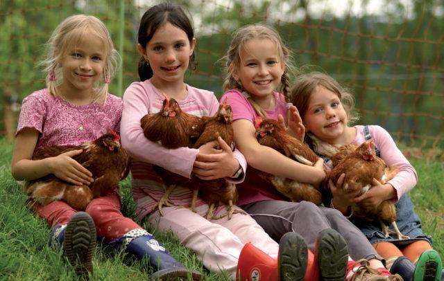Kinder mit Hühnern © Ludwig Berchtold / Vorarlberg Tourismus