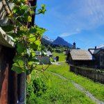 Blick taleinwärts Richtung Innerwald